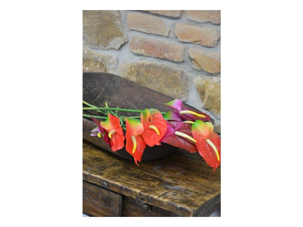 CERINO Umělá květina ANTURIE 68cm červená 1ks
