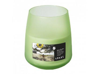 Citronella ve skle barva zelená s vůní citrónové trávy