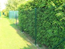 Montáž klasického plotového čtyřhranného zeleného poplastovaného pletiva bez zapleteného napínacího drátu – Plzeň