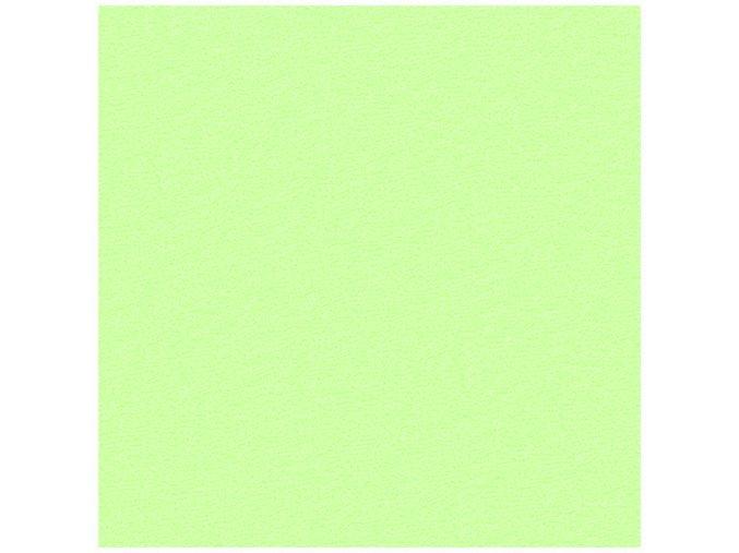 Froté prostěradlo Světle Zelené
