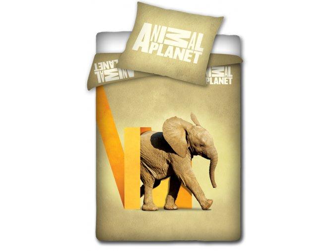 Bavlněné povlečení Animal Planet - Sloník