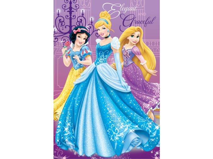 Dětská deka Disney - Princess