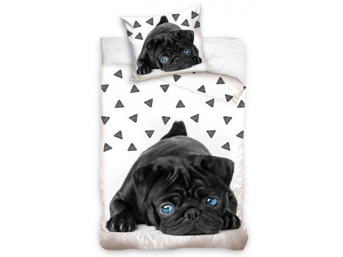 Bavlnene povleceni Pes Mops s modryma ocima
