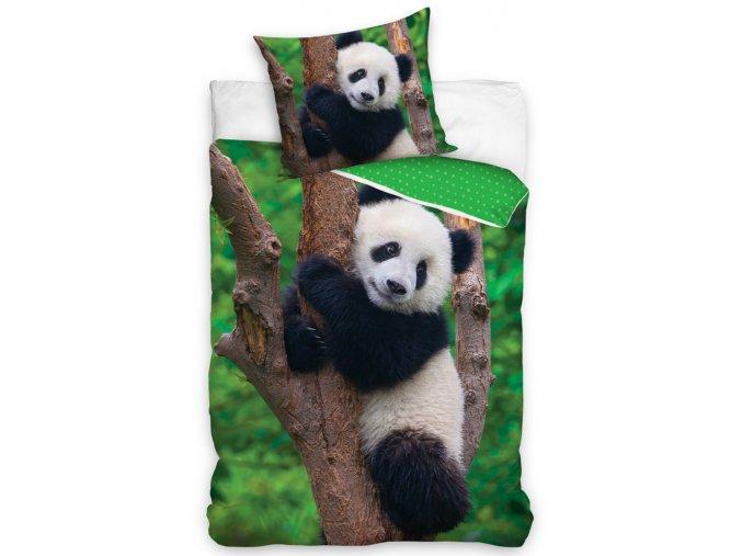 Bavlnene povleceni Medvidek Panda, 140x200 + 70x90 cm