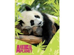Dětská deka Animal Planet - Panda