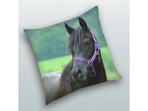 Polštářek Kůň