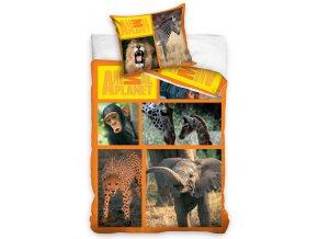 Bavlněné povlečení Animal Planet - Safari