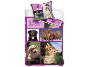 Bavlněné povlečení Animal Planet - Pejsci a kočičky