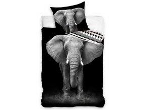 Bavlnene povleceni Slon Africky