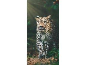 Frote osuska Gepard v pralese