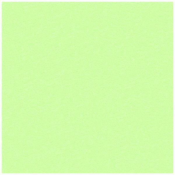Froté prostěradlo Světle Zelené Rozměr: 90x200 cm