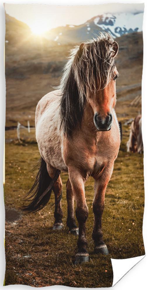 Froté osuška Kůň v horách
