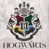 Detska deka Harry Potter Famfrpal 110x140 detail