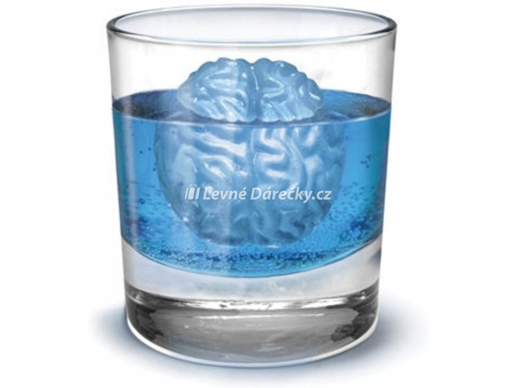 ledove mozky 1