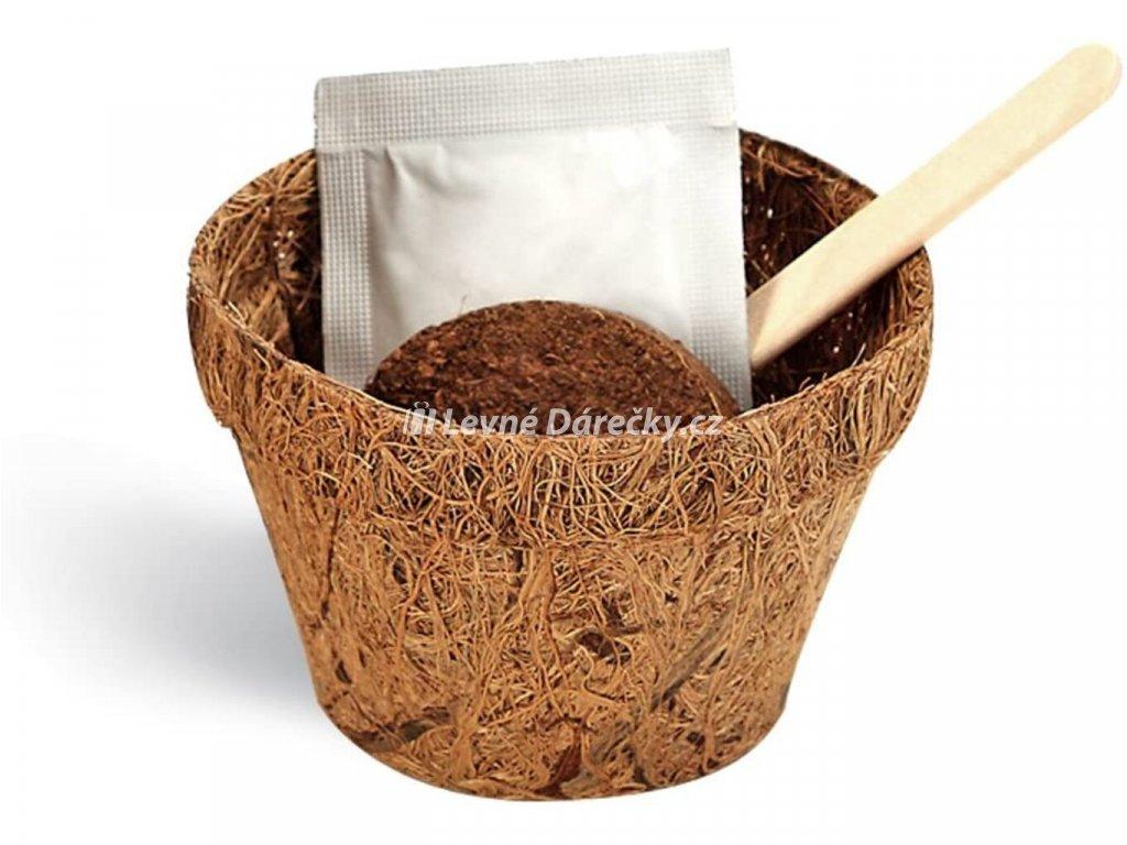 Grow me - Gratulace!