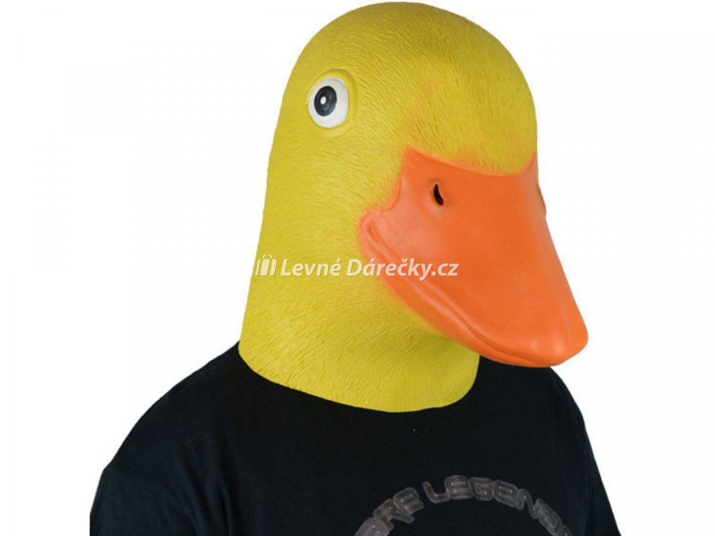 Maska kachna