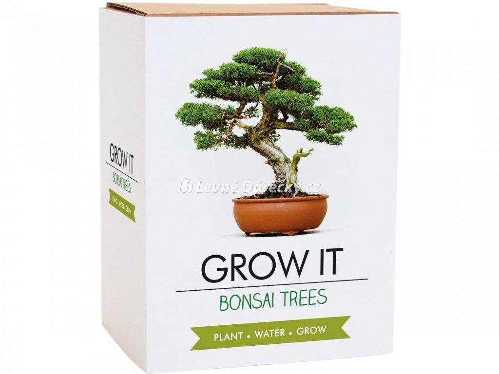 Grow it - Bonsai