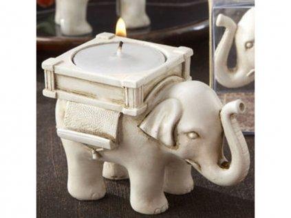 svicen slon pro stesti 2