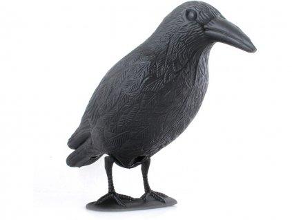 odpuzovac holubu a ptaku havran 2