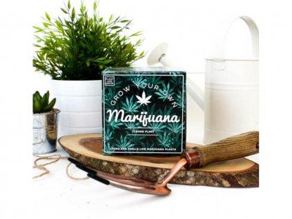 Vypěstuj si vlastní Marihuanu