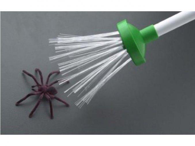 Postrach pavouků