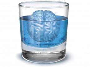 Ledové mozky