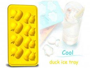 Ledové kačenky