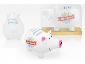Pokladnička prasátko - Moje finance