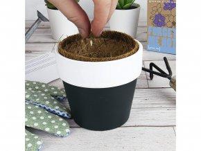 Grow me - Relaxační čaj