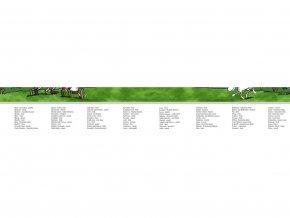 Stíracá mapa Česká republika 2