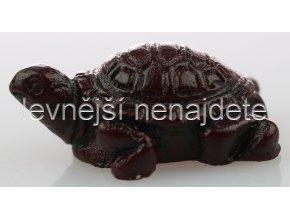 Želva pro štěstí