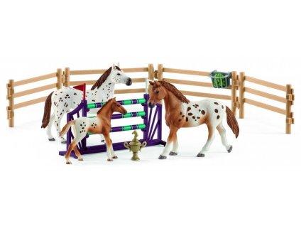 Set appalosští koně a tréninkové příslušenstí 42433