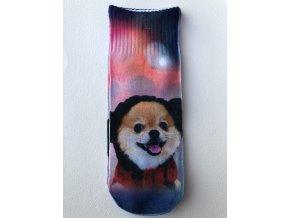 Dětské ponožky s celopotiskem zvířátek, velikost 24-27 Pes