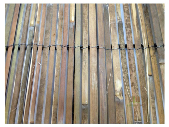 prirodni bambus