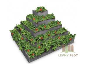 Recyklát pyramida na jahody