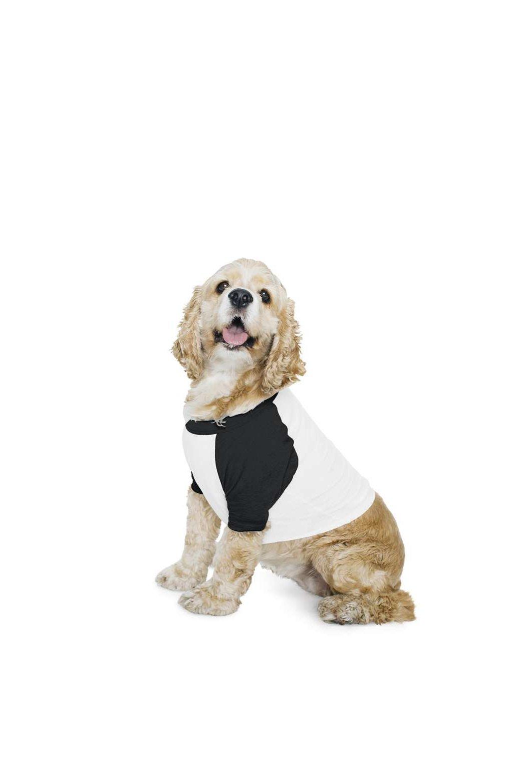 Raglánové třičko DOG s 3/4 rukávy