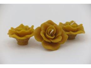 Svíčka plovoucí růže