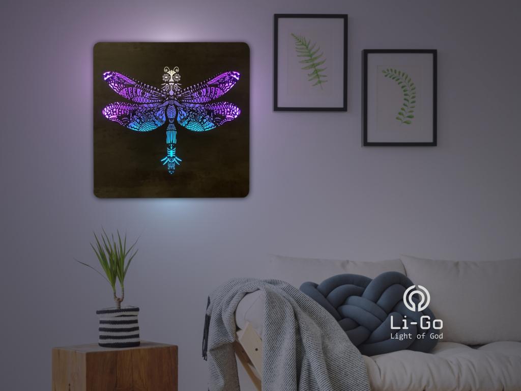 """""""Vážka"""" světelný obraz RGB 62x62cm"""
