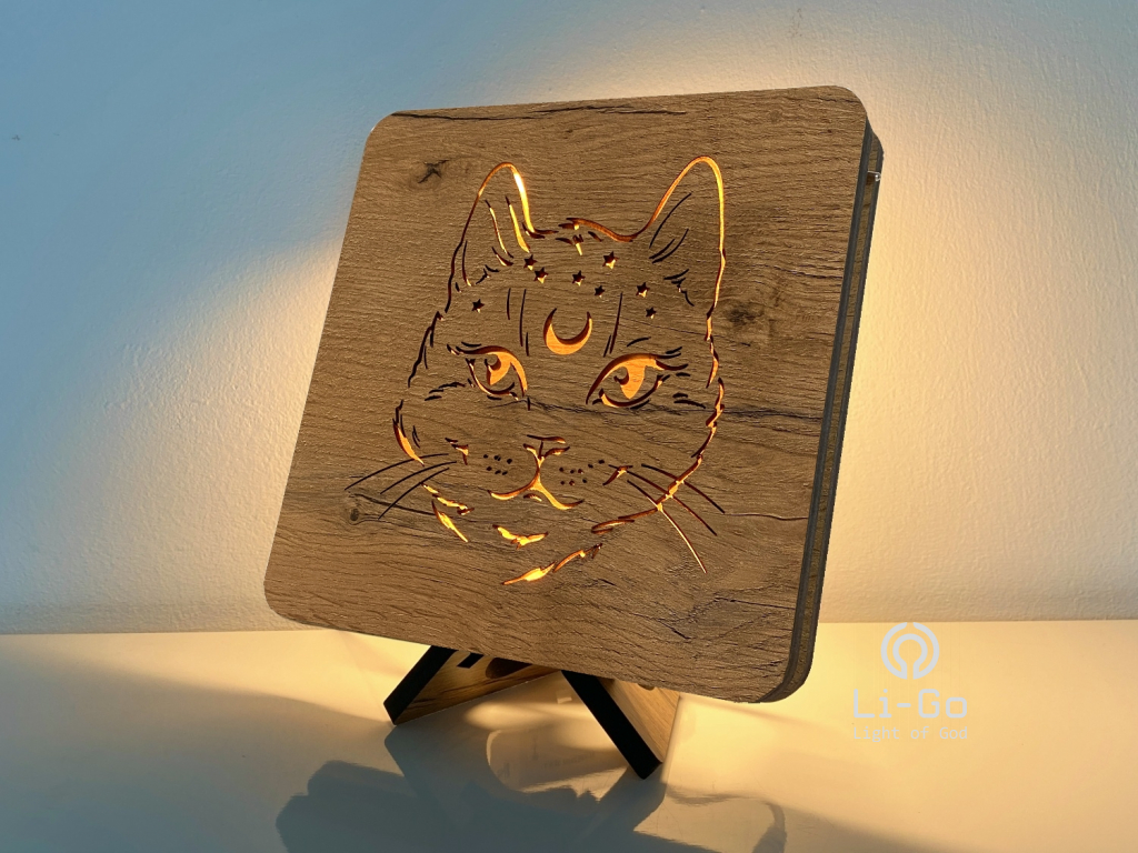 """Kosmo kočka"" lampa 19x19"
