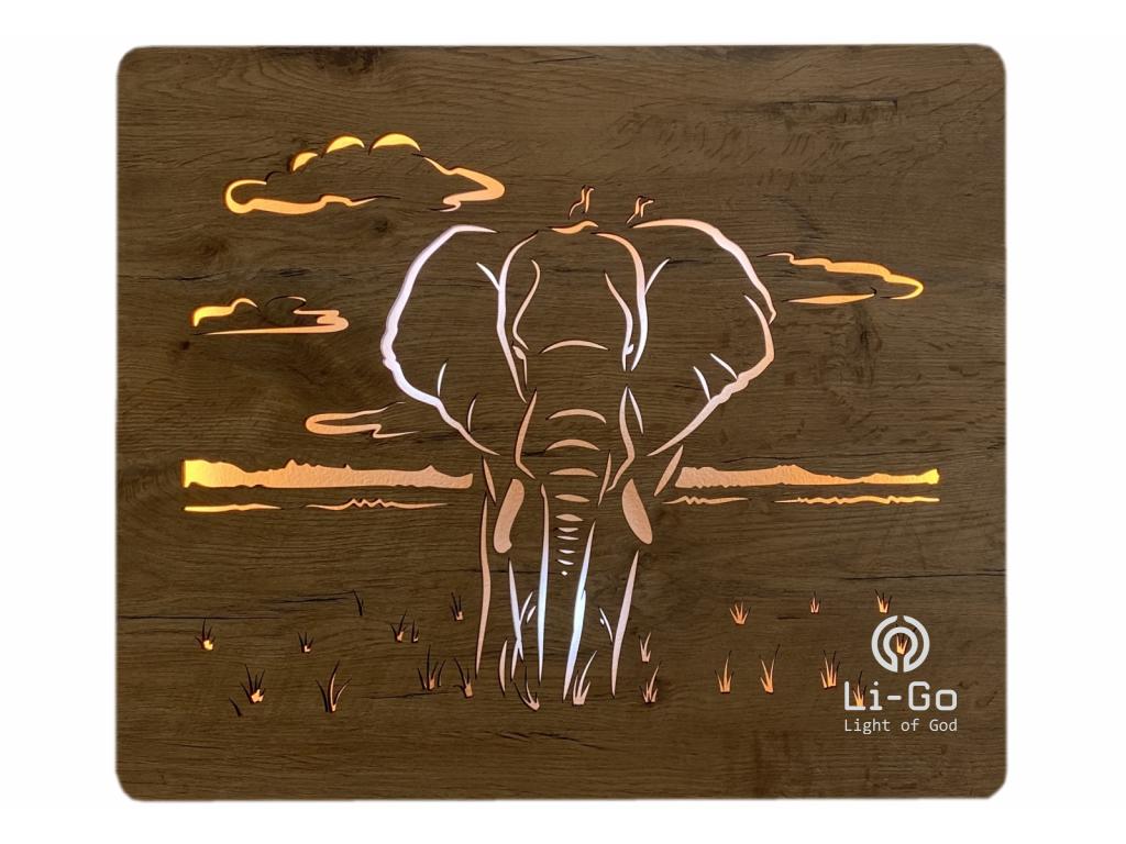 """""""Slon"""" světelný obraz 65x55cm"""
