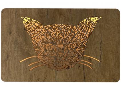 """""""Hlava kočky"""" světelný obraz 62x38cm"""