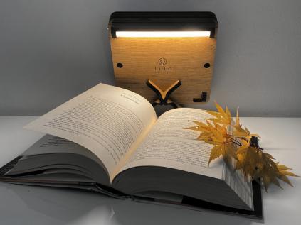 """Budha"" lampa 19x19"