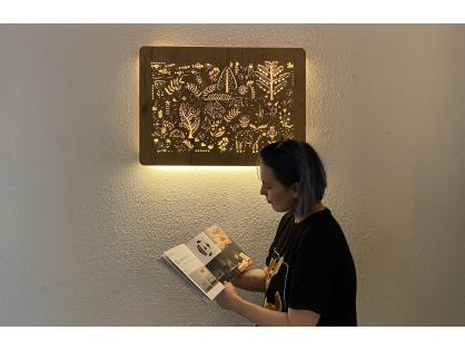 Přídavné LED světlo k obrazovému svítidlu