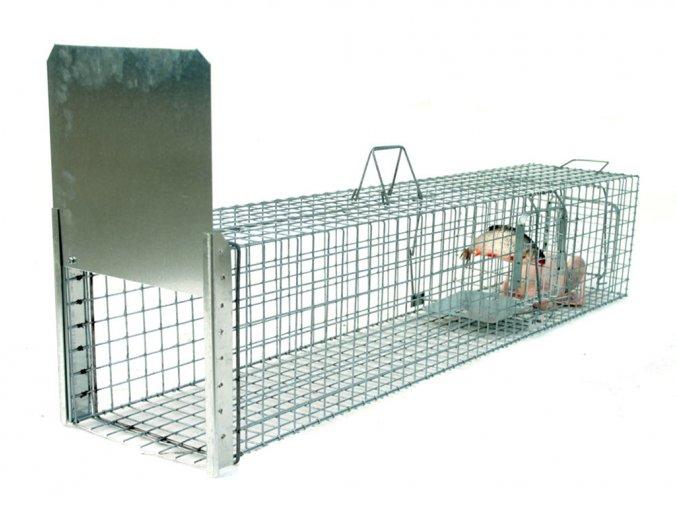 Profesionálna odchytová pasca na kuny, mačky, psy, vydry, bobry, líšky - ST130x34x34K  + v balenie DARČEK ZADARMO - odchytová sada za €7.99,-