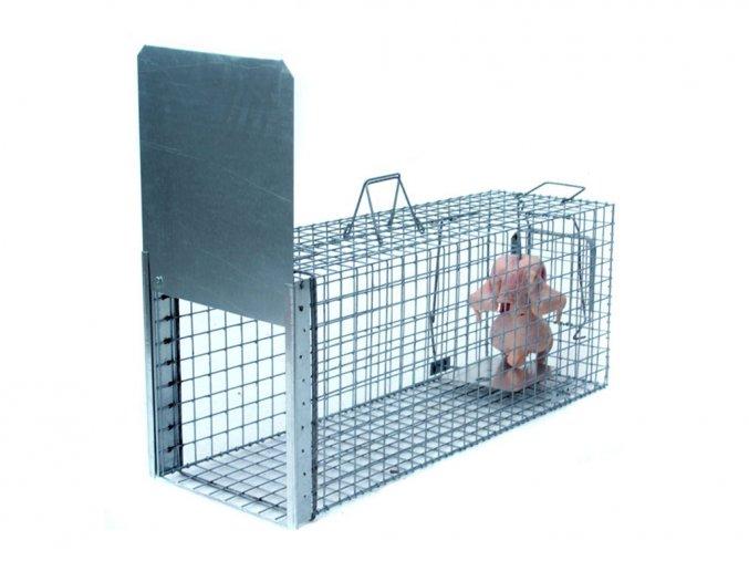Profesionálne pasca na škodnú zver líšky, kuny, psy, vydry a bobry ZL105x34x42 veľmi odolný jednostranný sklopec sa záklopkou 1