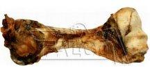 Kost sušená
