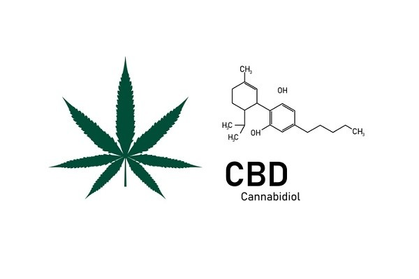 Latin-America-paves-the-way-for-CBD-cosmetics_wrbm_large