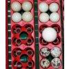 Líheň COVINA ET12 AUTOMATICA - automatické otáčení vajec, nastavení teploty inkubace, s teploměrem a bez vlhkoměru