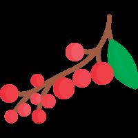 Jeřabinové destiláty