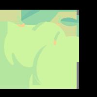 Rynglovice